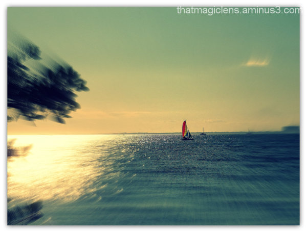 Afternoon Sailing