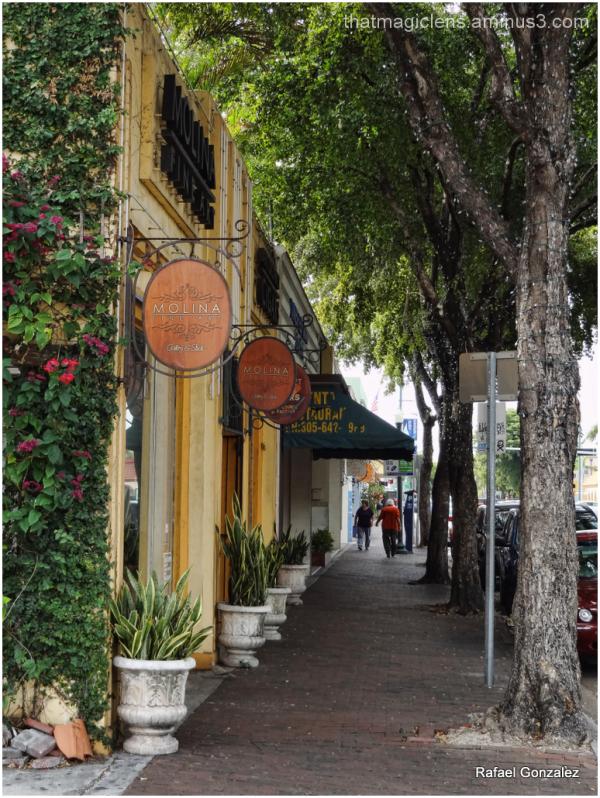 Calle Ocho 2
