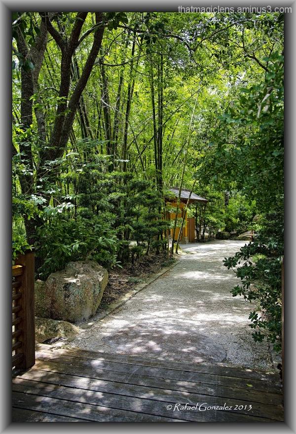 Walk View I