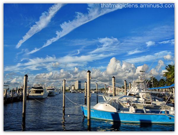 The Wonderful Marina