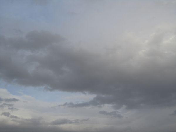 ابرها