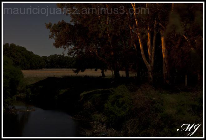 Tres Arroyos rural Nocturna
