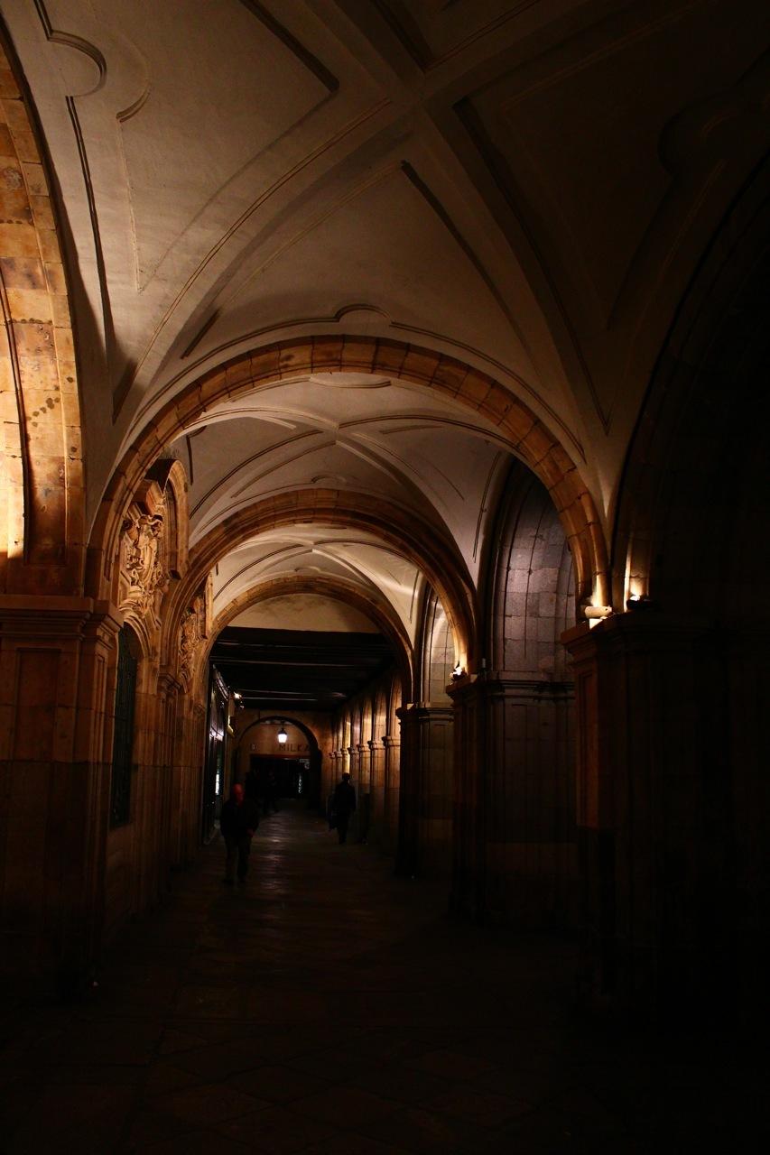 Serie Salamanca (III Los portales de la Plaza)