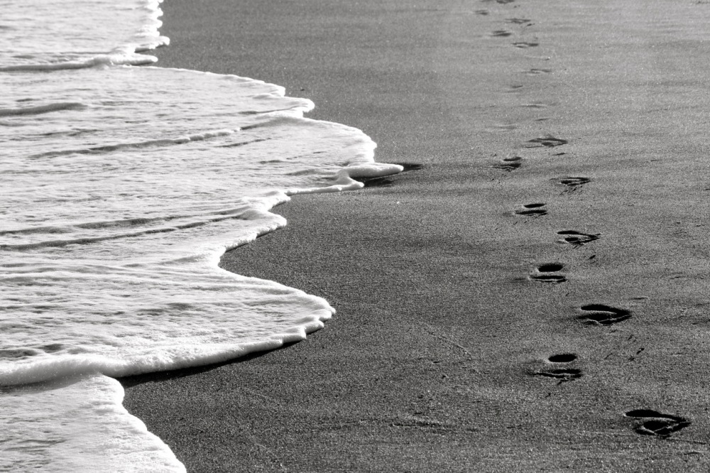 Paseo por la playa II