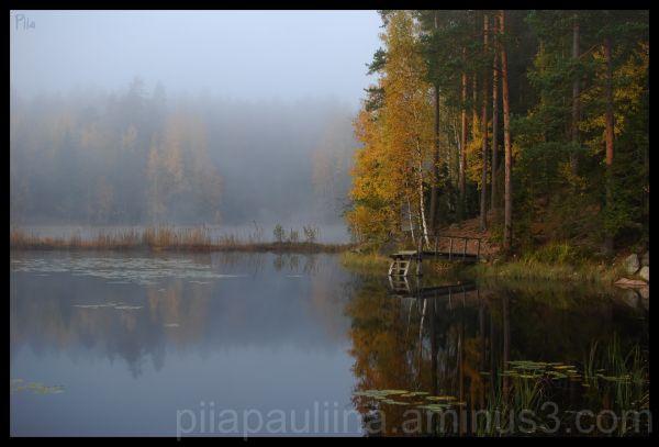 Fall mist.