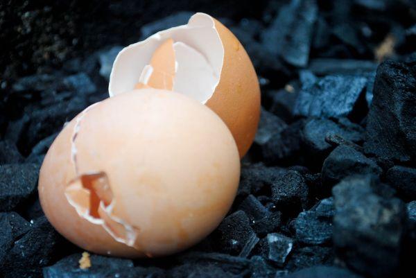 Eggs coal cracked open