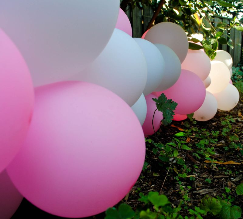 Pink and white balloons nature