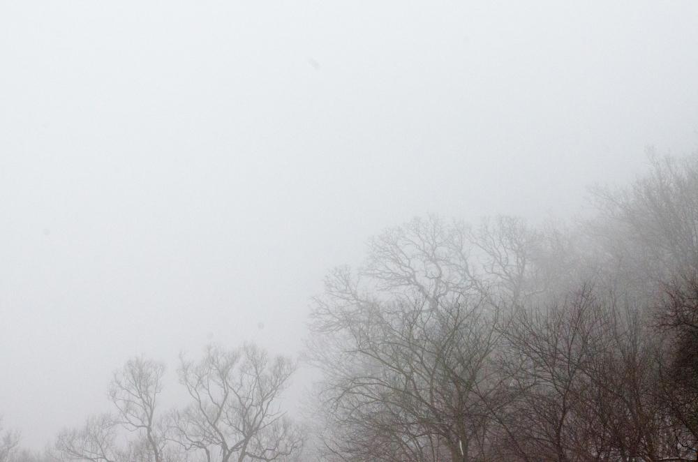 Such a fog