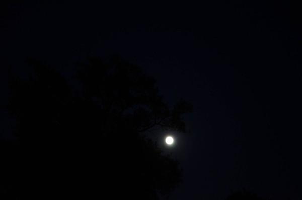 Subtle moon