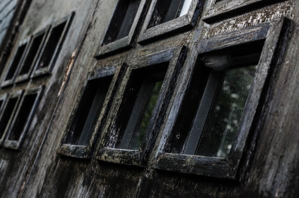 Rows of windows