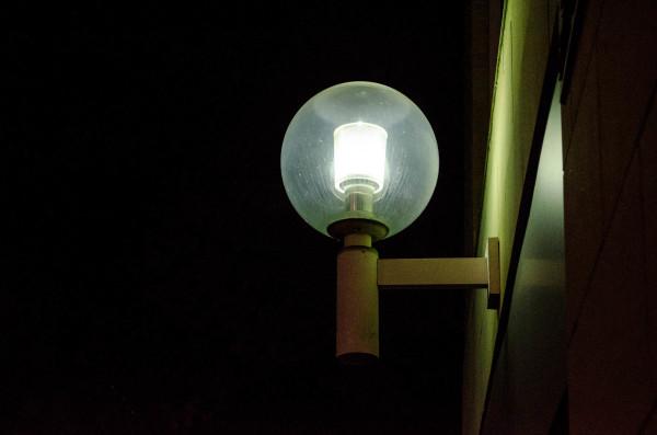 Odd bulb