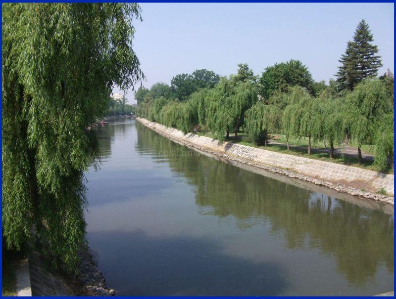 Bega canal 2011
