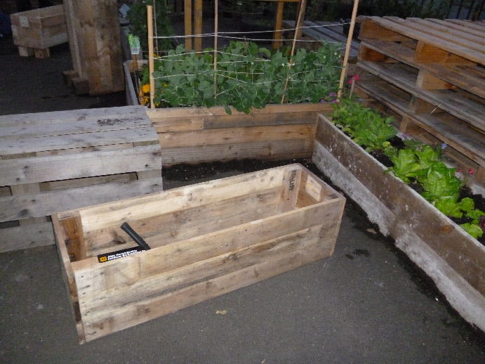 My planter from a pallet