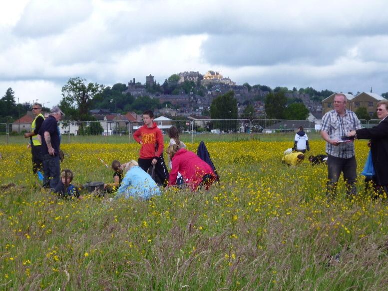 Battle of Bannockburn archaeological dig
