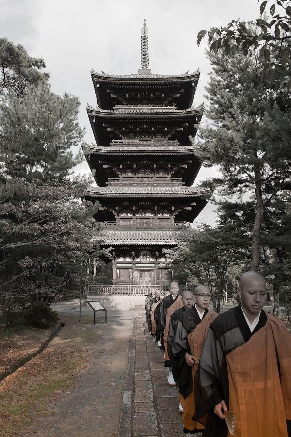 Ninna-ji temple and monks, Kyoto
