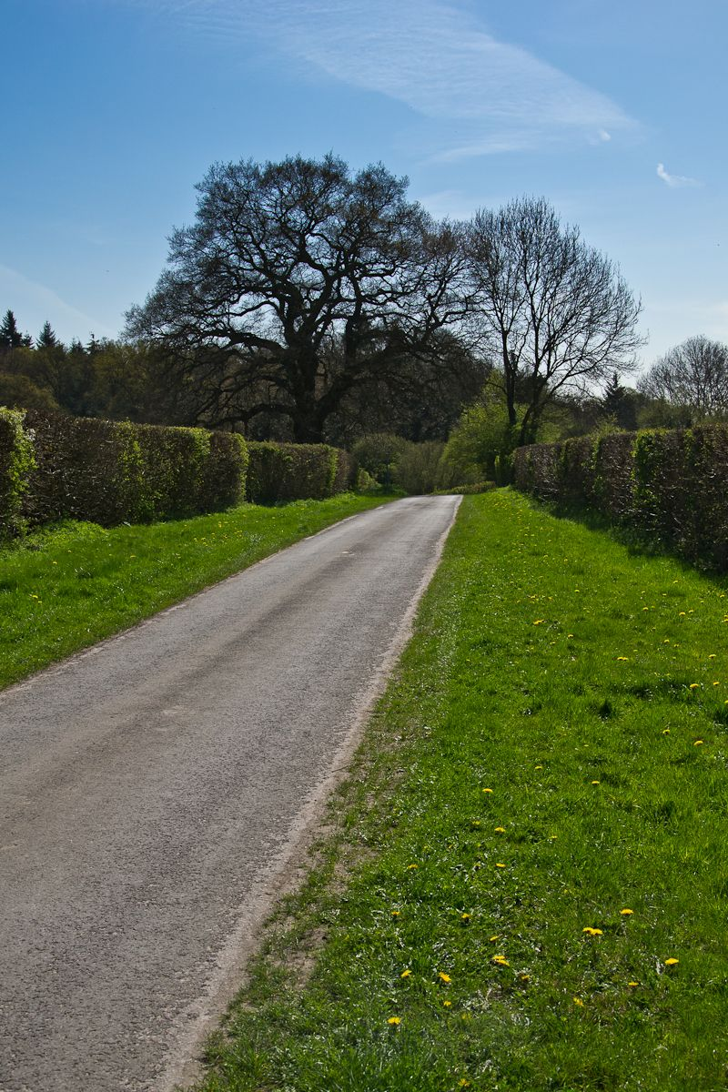 A country road, that leads to Wargrave, Berkshire,