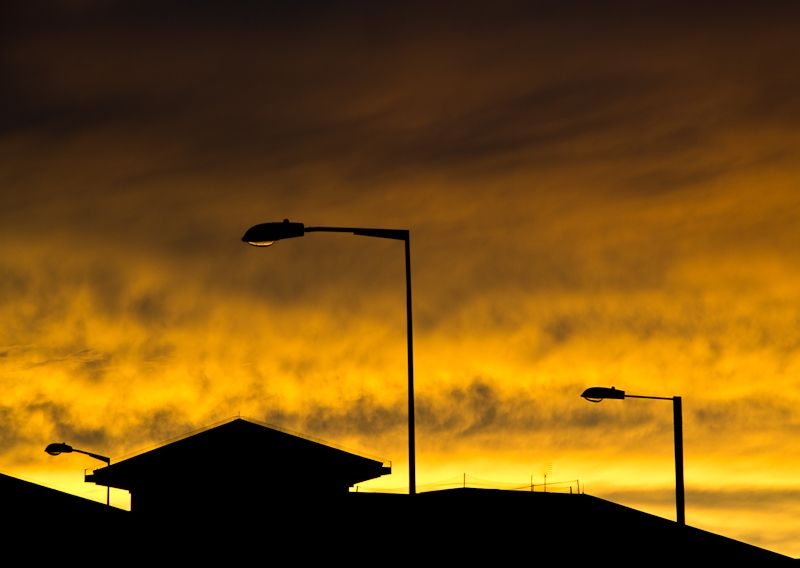 Lamp-posts silhoutted against sunset