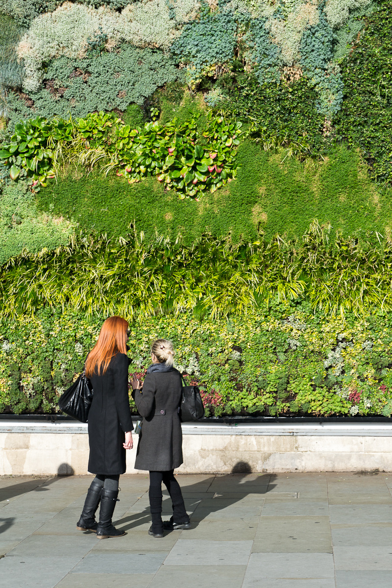The Living Wall at Trafalgar Square