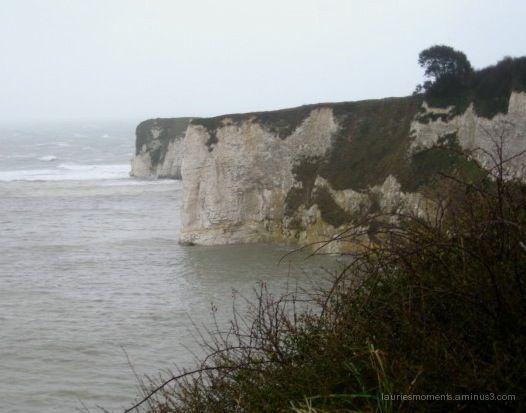 White cliffs - Studland, England
