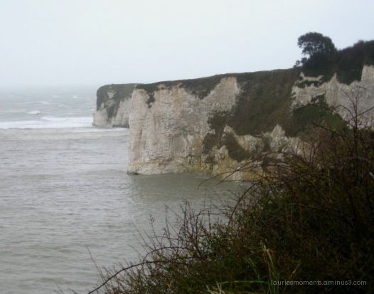 White cliffs - Studland, England