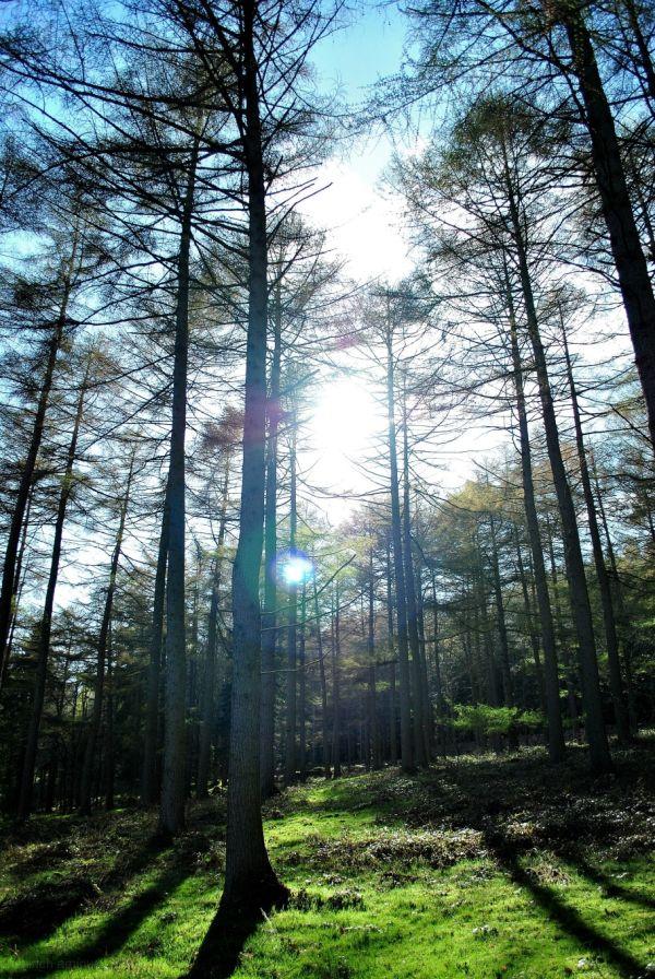 North Derbyshire