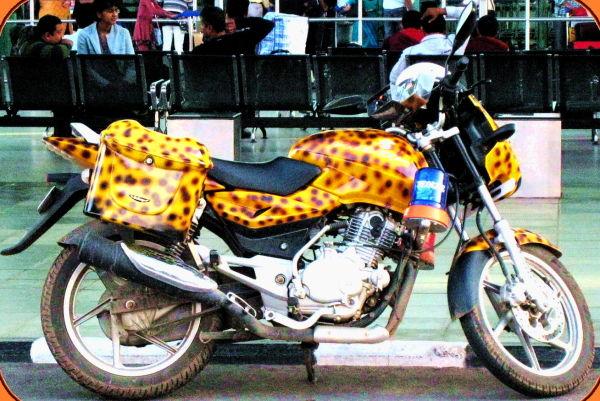 Iron Leopard!