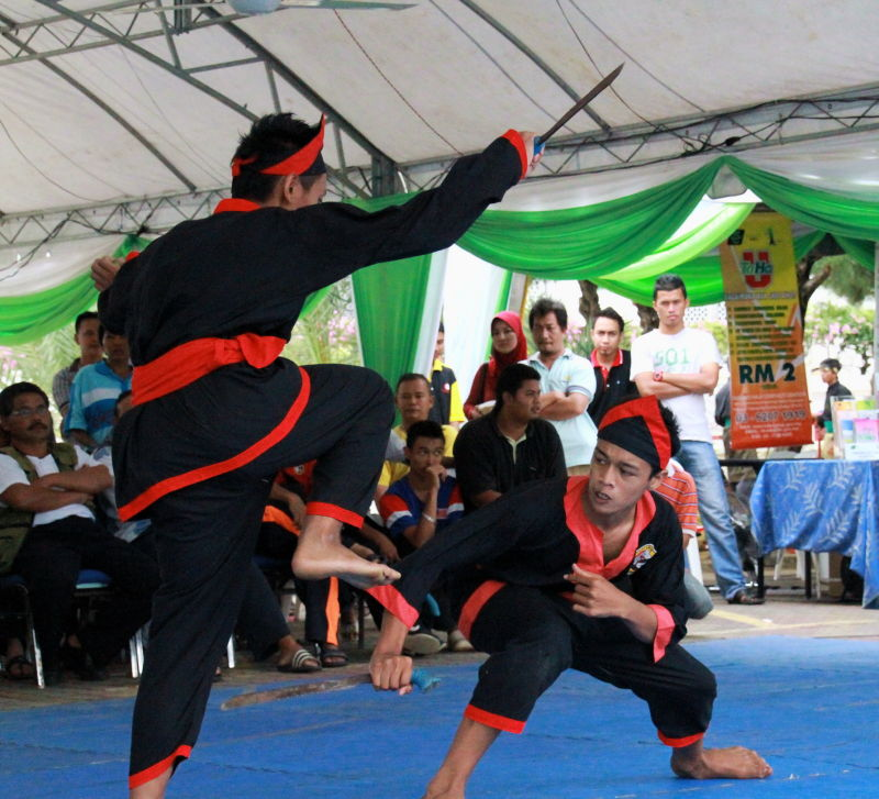 Martial arts competition (7)