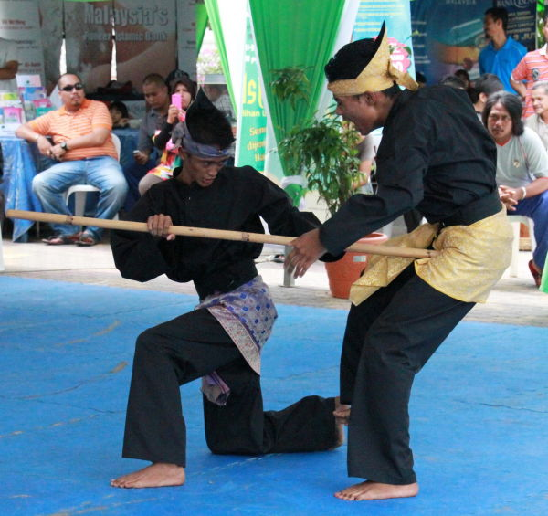 Martial arts competition (10)