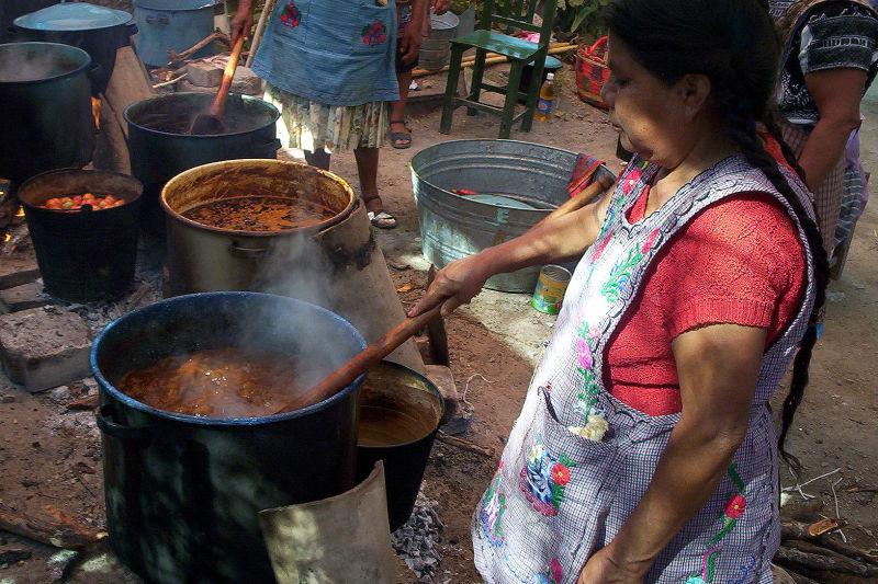 Gastronomía Santa María Coapan - jl