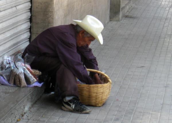 Vendedor de semillas - jlg