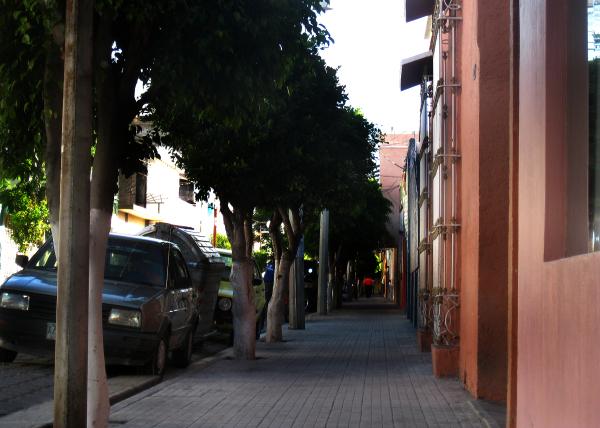 Callejeando - jlg