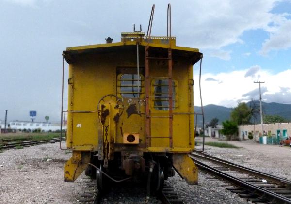 El Cabús Amarillo- jlg