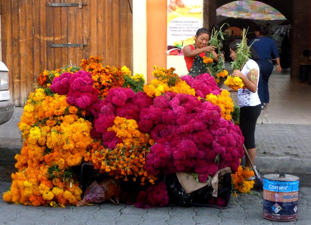 Venta de flores para el día de muertos - jlg
