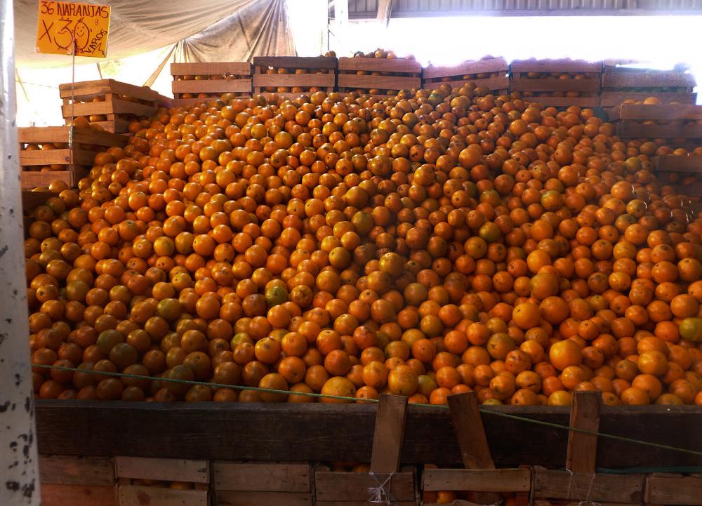 Más naranjas - jlg