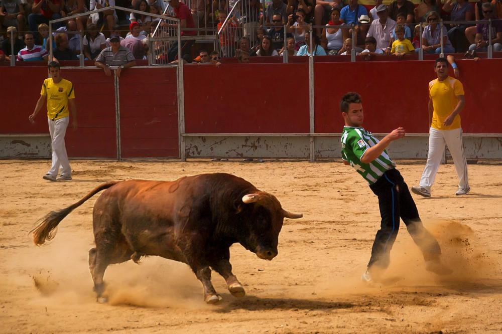 Dodging the bull...#1