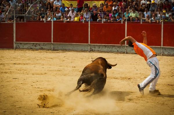 Dodging the bull...#4