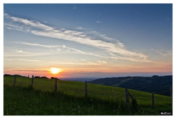 Abend Oberdambach Juni Zaun Stacheldraht Sonne