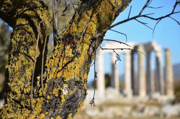 Nemea, Greece