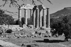 The temple of Nemea