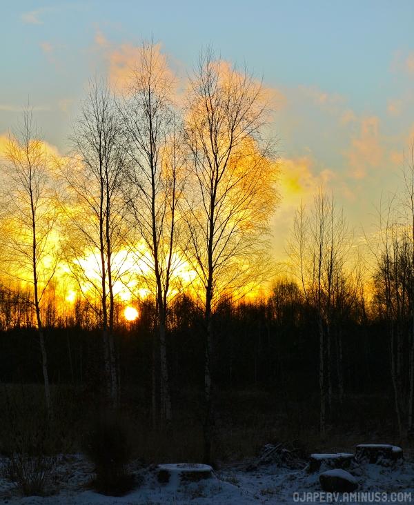 Even More of Christmas Sunset at Setomaa