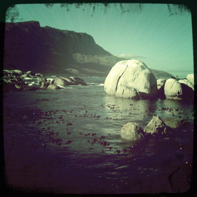 Cape town's rock