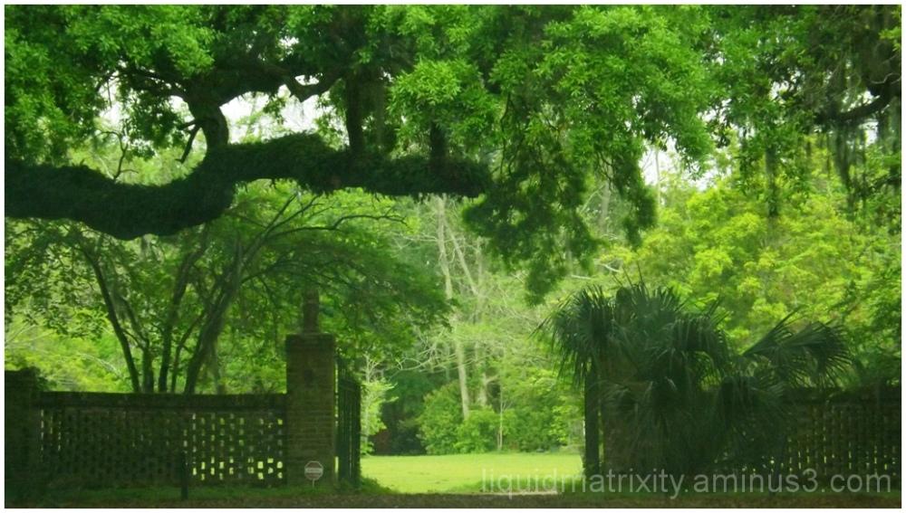 Plantation Gate