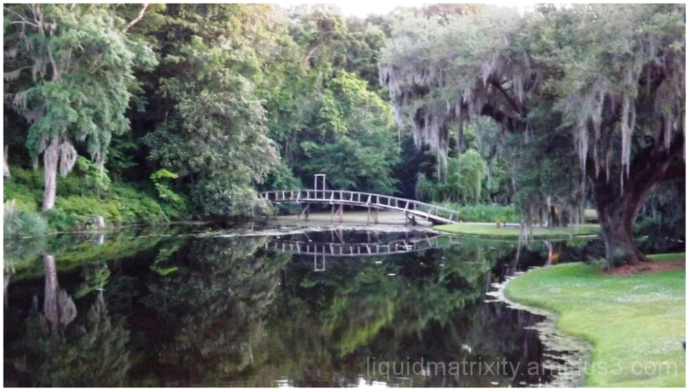 Bridge Reflections at Middleton Place