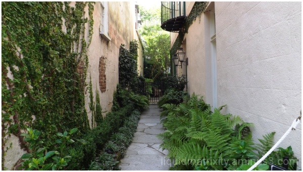 Hidden Charleston Garden