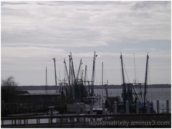 Shem Creek Boats