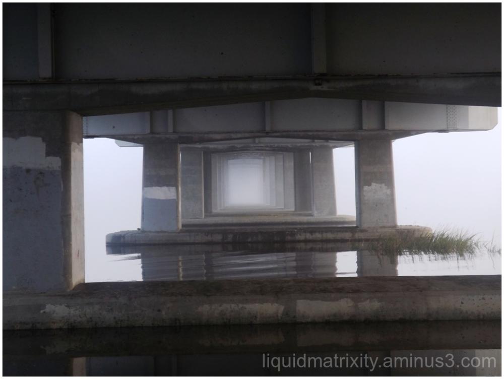 Fog Door
