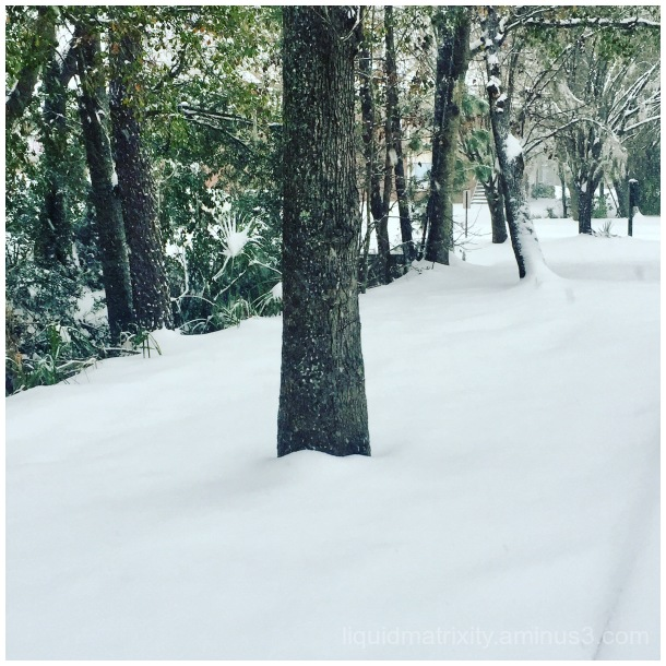 Snow in Charleston