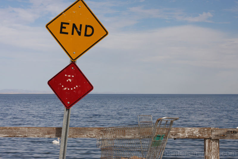 #the salton end