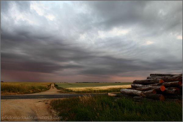 ciel, orageux, paysage, champs