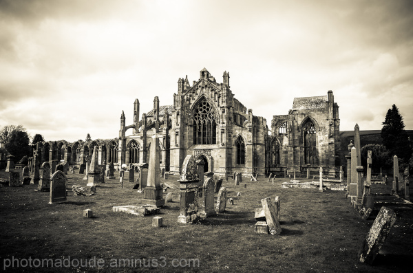 Melrose Abbaye